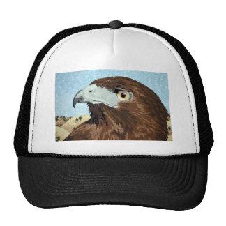 Cadir - halcón de la Rojo-cola Gorra