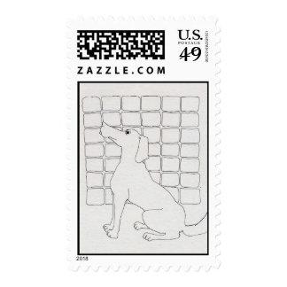 Cador = nombre francés para el perrito - franqueo