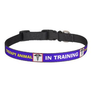 Caduceo EN el cuello de perro animal de la TERAPIA Collares Para Perros