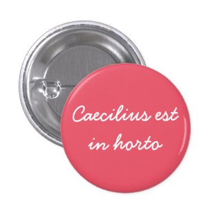 Caecilius est in horto badge pinback button
