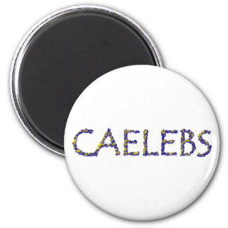 caelebs bachelor bachelor 2 inch round magnet
