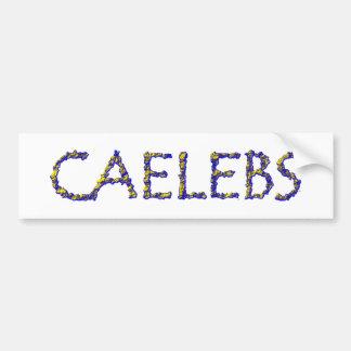 caelebs bachelor bachelor bumper sticker