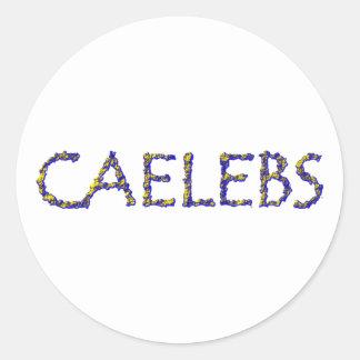 caelebs bachelor bachelor classic round sticker