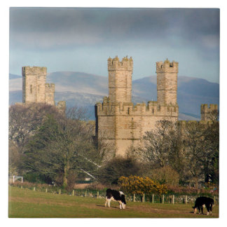 Caernarfon Castle Wales. Ceramic Tile