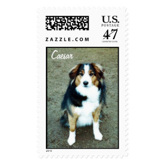 Caesar Dog Postage