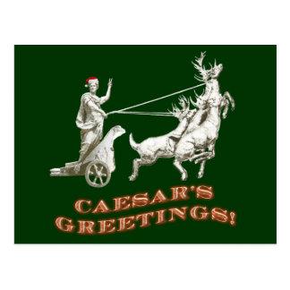 Caesar's Greetings Postcard