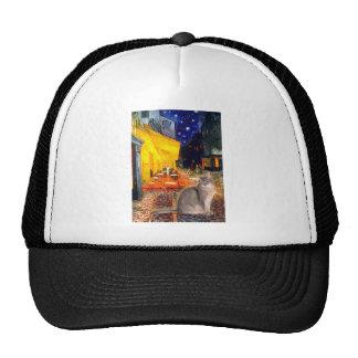 Cafe - Abyssinian (blue 21) Trucker Hats