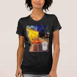 Café - algodón de Tulear 4b Camisetas