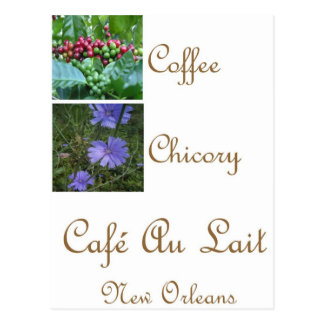 CAFE AU LAIT NEW ORLEANS COFFEE CHICORY POSTCARD