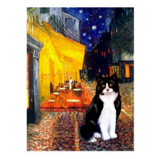 Cafe - Black and White cat Postcard
