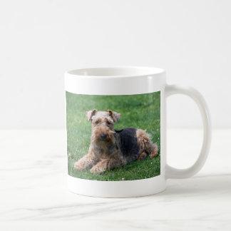 Café de la foto del perro del terrier galés o taza