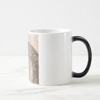 Café del caballo o taza árabe del té