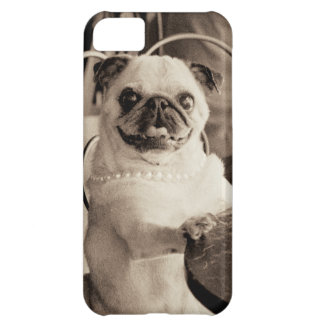 Cafe Pug iPhone 5C Cover