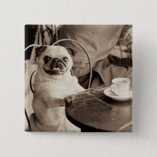 Cafe Pug Pinback Button