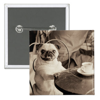 Cafe Pug Pinback Button