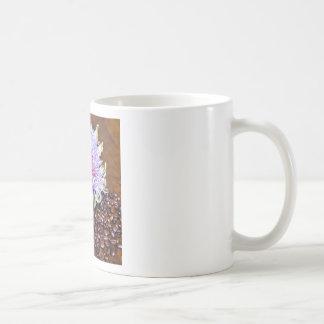 Café y alcachofa