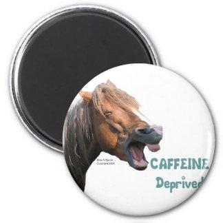 Caffeine Deprived  Funny Horse Magnet