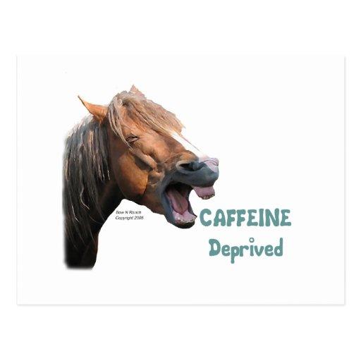Caffeine Deprived  Funny Horse Postcard