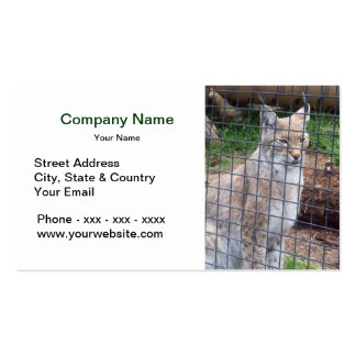 Cage Animal Business Card