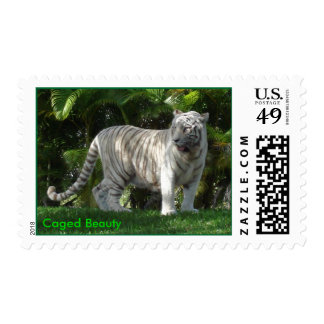 Caged Beauty Postage