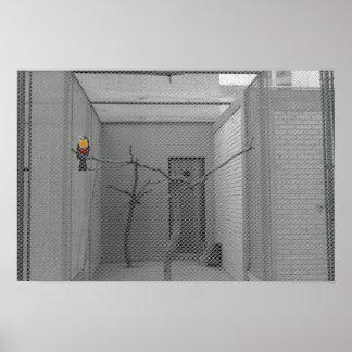 Caged bird poster