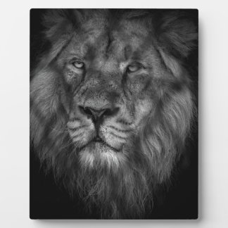 Caged king plaque