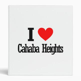 Cahaba Heights, Alabama City Design Binder