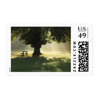 Cahir, County Tipperary, Ireland Postage