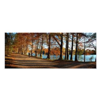 Caída 3 del rastro de Lake Butler de la mariquita Impresion Fotografica