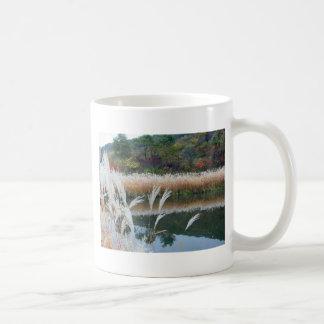 Caída a lo largo del río de Kikapú en Wisconsin Taza