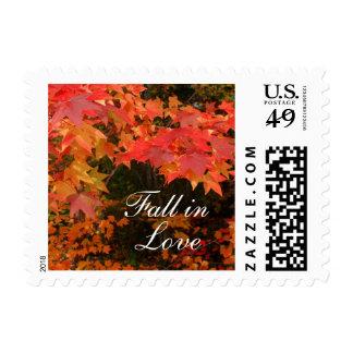 Caída de las hojas de otoño en sellos del amor