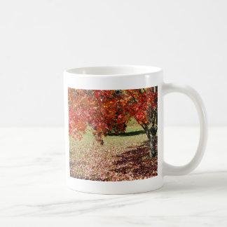 Caída debajo del árbol de arce tazas de café