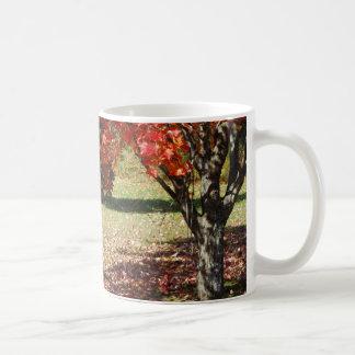 Caída debajo del árbol de arce taza de café