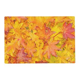 Caída decorativa roja y amarilla de las hojas de tapete individual
