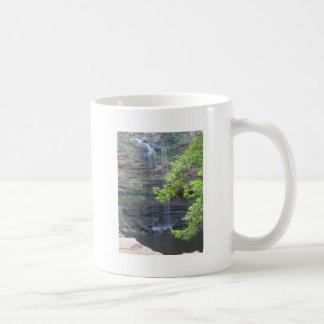 Caída del agua de Cedar Falls Tazas