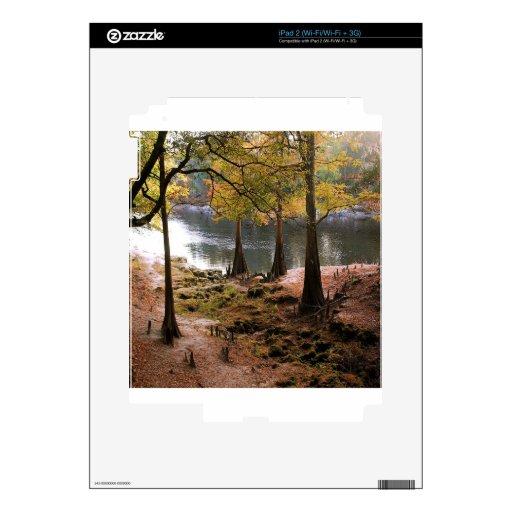 Caída del árbol en el río tranquilo iPad 2 skins