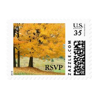 Caída del boda del otoño de RSVP de la postal que Sellos