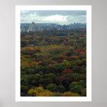 Caída del Central Park Impresiones