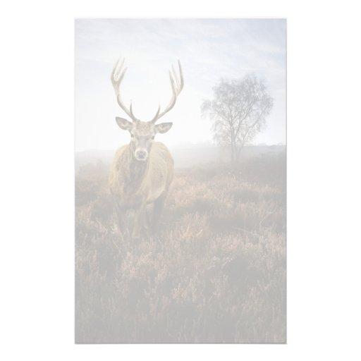 Caída del otoño con el macho hermoso del ciervo co papelería personalizada