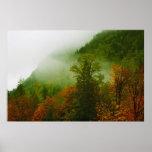 Caída e impresión de la niebla poster