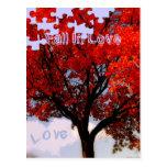 Caída en amor postal