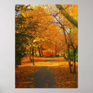 Caída en Central Park 06 27 Póster