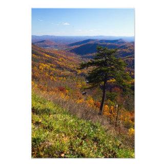 Caída en el parque nacional de Shenandoah, Virgini Impresiones Fotograficas