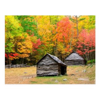 Caída en Great Smoky Mountains Tarjeta Postal