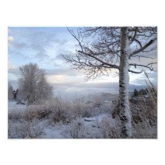 Caída en Jackson Hole, WY Fotografías