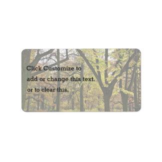 Caída en los árboles etiquetas de dirección