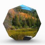 Caída en parque nacional del Acadia de la charca d