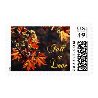 Caída en sellos del amor