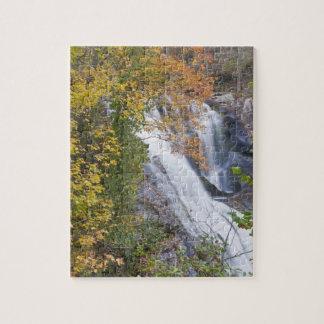 Caídas calvas del río puzzle con fotos