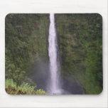Caídas de Akaka, isla grande, Hawaii Alfombrilla De Ratones